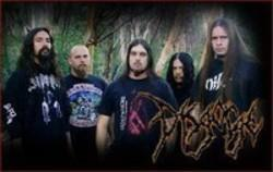 Best and new Disgorge Death Metal songs listen online.