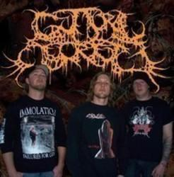 Best and new Guttural Secrete Death Metal songs listen online.